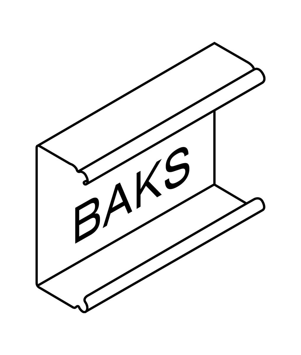 Marka BAKS