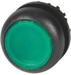 Napęd M22S-DL-G przycisk podświetlany płaski zielony z samopowrotem bez opisu