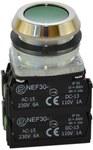 NEF30-k2X2Y-zielony przycisk sterowniczy